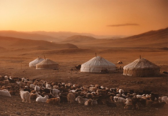 40% of Mongolia's 2.8 million inhabitants are herders.