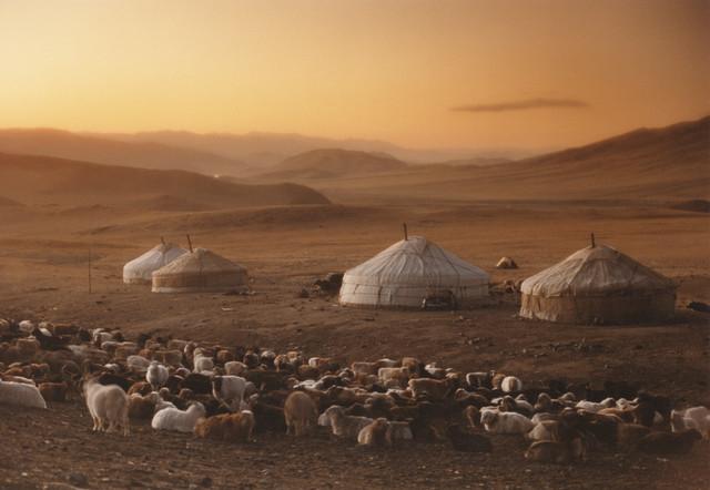 40% of Mongolia's 2.8 million inhabitants are herders.