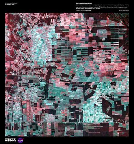 landsat bolivian deforestation